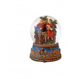 Snow globe with Nativity donkey